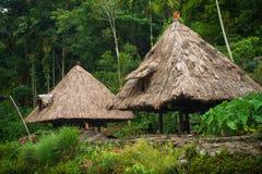 Batad村庄- Ifugao,菲律宾- 2013年7月16日:当地Ifugao村庄小屋在Batad,在吕宋,菲律宾 库存图片