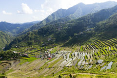Batad Royalty Free Stock Image