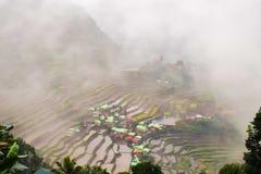 Batad Banaue risterrasser arkivbilder