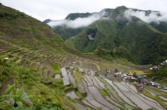 Batad Field Terraces - Philippines Royalty Free Stock Images