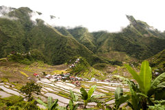 Batad Field Terraces - Philippines Stock Images