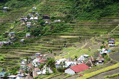 Batad - Philippines Royalty Free Stock Images