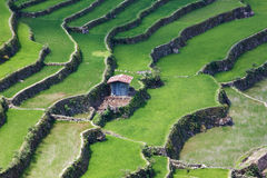 Batad-Reis-Feldterrassen in Ifugao-Provinz, Banaue, Philippinen Lizenzfreie Stockfotos