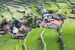 Batad rice field terraces in Ifugao province, Banaue, Philippines Royalty Free Stock Image