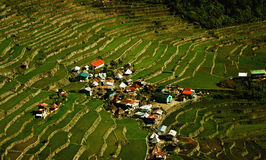 Batad rice terraces. A small village in the middle of Batad rice terraces in the Philippines Stock Image