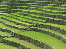 Batad village. High wide angle shot of rice terraced fields. Batad village, Philippines Stock Photo