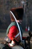 Bataille chez Austerlitz 2009 Photos libres de droits