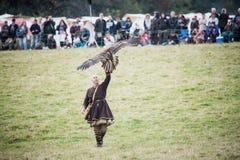 Bataille 1066 de Hastings Images libres de droits
