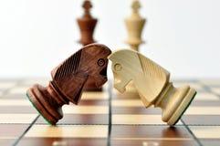 Bataille des cavaliers d'échecs Photographie stock libre de droits