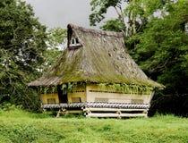 batak房子传统的苏门答腊 免版税库存照片