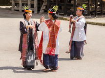 Batak dans i Sumatra, Indonesien Royaltyfri Bild
