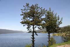 Batak Lake. On the way to Plovdiv in a village with similar name as the lake royalty free stock images