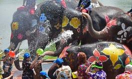 Batalha da água do jogo dos elefantes durante Songkran Foto de Stock Royalty Free