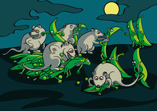 Batalha da noite dos ratos com as vagens de ervilha no jardim ilustração royalty free