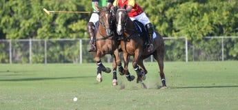 Batalha de Polo Player do cavalo imagens de stock royalty free