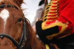 Batalha em Austerlitz Fotografia de Stock Royalty Free