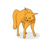 Batalistyczny kot Fotografia Stock