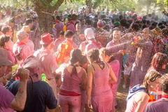 Batalla del vino in strada rialzata, Spagna Fotografie Stock Libere da Diritti