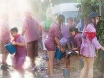 Batalla del vino - wine madness in Haro, Spain Stock Images