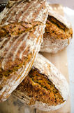 Batard shaped bread Royalty Free Stock Images