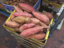 Batat sweet potato in Carmel market, Tel Aviv Stock Image