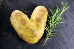 Amor de Potatoe Foto de Stock