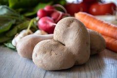 Batata dada forma coração com outros vegetais orgânicos frescos no fundo fotos de stock royalty free