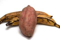 Batata doce e banana-da-terra Fotos de Stock Royalty Free