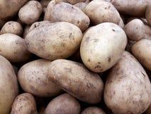 Batata fresca no contador foto de stock