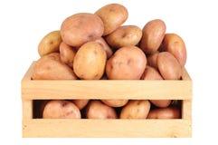 Batatas. Foto de Stock Royalty Free