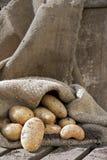Batatas! Imagens de Stock