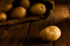Batatas Foto de Stock Royalty Free