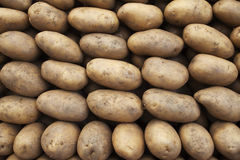 Batatas Foto de Stock Royalty Free