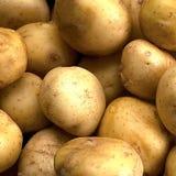 batatas Imagens de Stock Royalty Free
