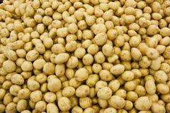 Batatas amarelas imagem de stock royalty free