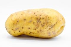 Batatas amarelas cruas muito frescas do tub?rculo fotos de stock