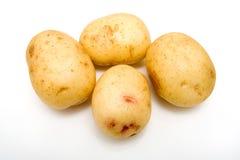 Batatas brancas isoladas. Fotos de Stock