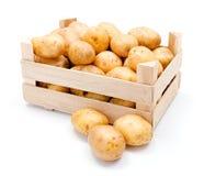 Batatas brancas na caixa de madeira foto de stock