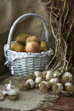 Batatas, cebolas, alho Foto de Stock
