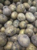 Batatas cruas, fundo do alimento Batatas douradas orgânicas cruas das batatas frescas na mercearia fotografia de stock
