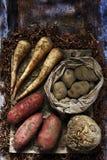Batatas da pastinaga do aipo vermelho do vegetal de raiz Fotos de Stock Royalty Free