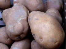 Batatas de Russet de Amey no mercado do ` s do fazendeiro foto de stock