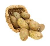 Batatas de Russet que derramam a cesta Fotografia de Stock