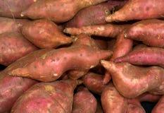 Batatas doces Imagens de Stock Royalty Free