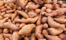 Batatas doces Imagem de Stock Royalty Free