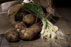 Batatas e alho fresco do jardim Imagens de Stock