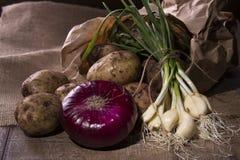 Batatas e alho fresco do jardim Imagens de Stock Royalty Free