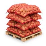Batatas em uns sacos de serapilheira na pálete Fotos de Stock Royalty Free