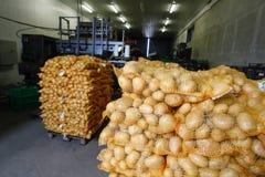Batatas ensacadas Imagens de Stock