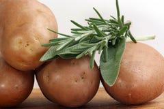 Batatas fervidas com rosemary Imagens de Stock Royalty Free